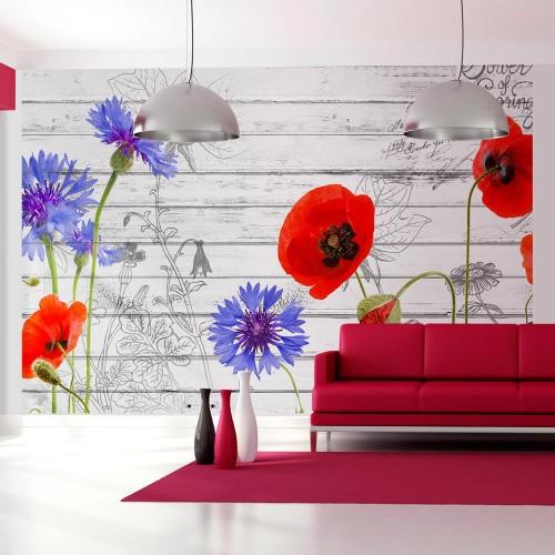 Fotomurale - Campo di fiori - Quadri e decorazioni