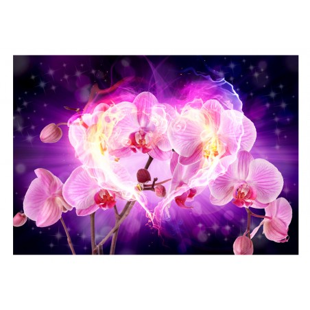 Fotomurale - Orchidee in fiamme - Quadri e decorazioni