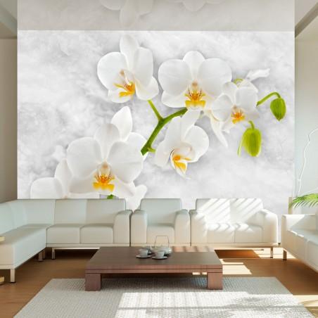 Fotomurale - Lirica orchidea - bianco - Quadri e decorazioni