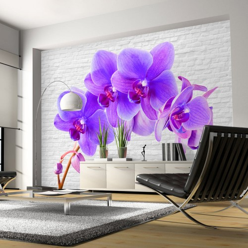 Fotomurale - Eccitazione viola - Quadri e decorazioni