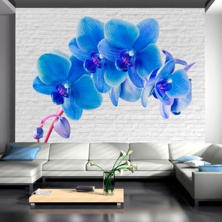 Fotomurale - Eccitazione blu - Quadri e decorazioni