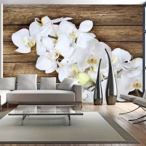 Fotomurale - Delicatezza su legno - Quadri e decorazioni