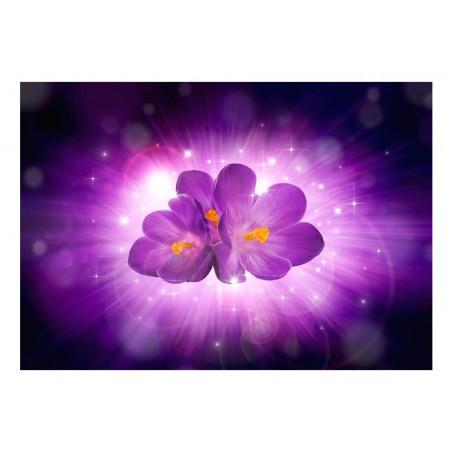 Fotomurale - Soffio di primavera - Quadri e decorazioni