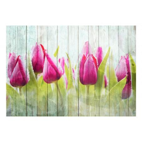 Fotomurale - Tulipani su un legno bianco - Quadri e decorazioni