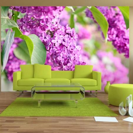 Fotomurale - Fiori lilla - Quadri e decorazioni