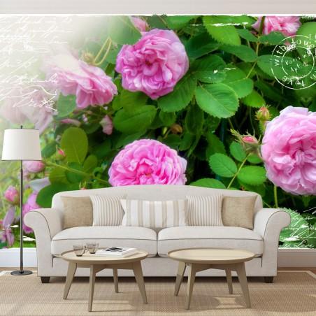 Fotomurale - Giardino estivo - Quadri e decorazioni