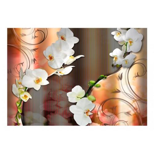 Fotomurale - Orchid - Quadri e decorazioni