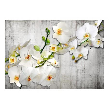 Fotomurale - With saffron accent - Quadri e decorazioni