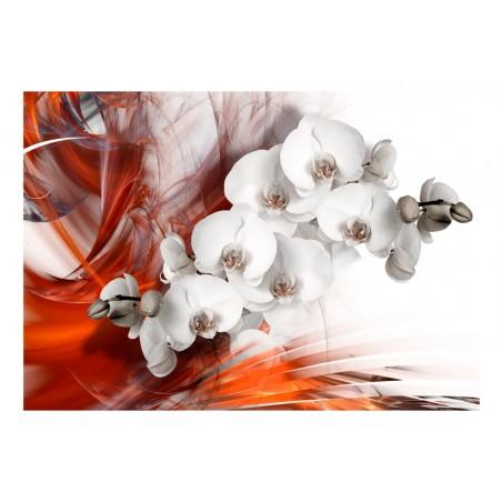 Fotomurale - Orchidea nel fuoco II - Quadri e decorazioni
