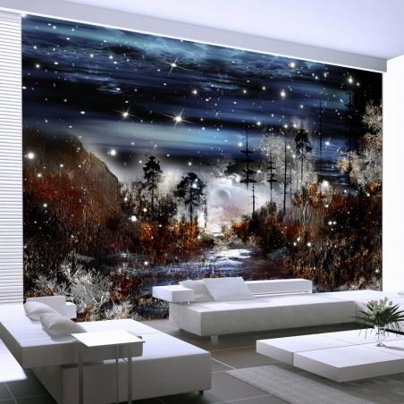 Fotomurale - Notte nella foresta - Quadri e decorazioni
