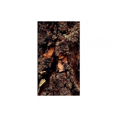 Fotomurale - Tempo inciso in legno - Quadri e decorazioni