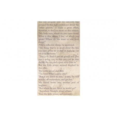 Fotomurale - The Little Prince - Spiritual Journey - Quadri e decorazioni