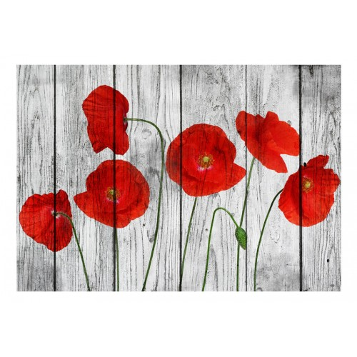 Fotomurale - Tale of Red Poppies - Quadri e decorazioni