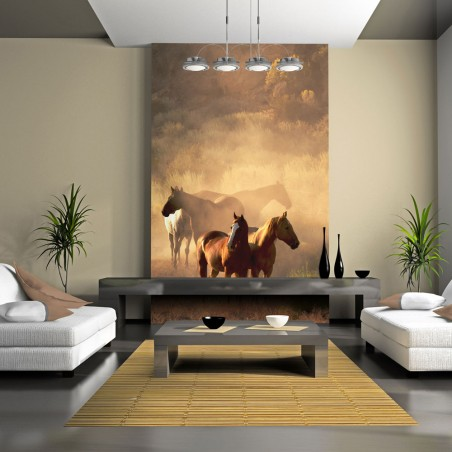 Fotomurale - Cavalli selvaggi nel deserto - Quadri e decorazioni