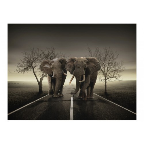 Fotomurale - Città degli elefanti - Quadri e decorazioni