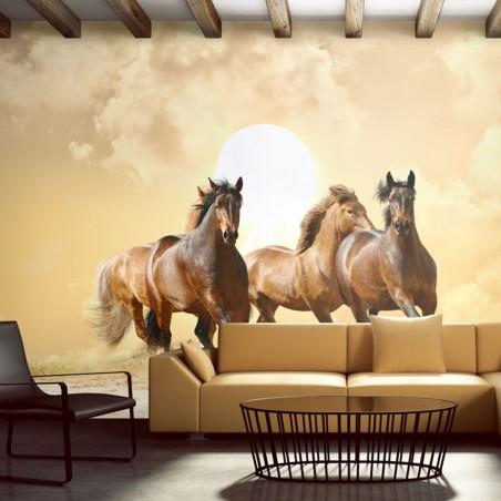 Fotomurale - Cavalli al galoppo - Quadri e decorazioni