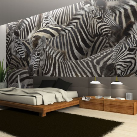 Fotomurale - Branco di zebre ipnotizzante - Quadri e decorazioni