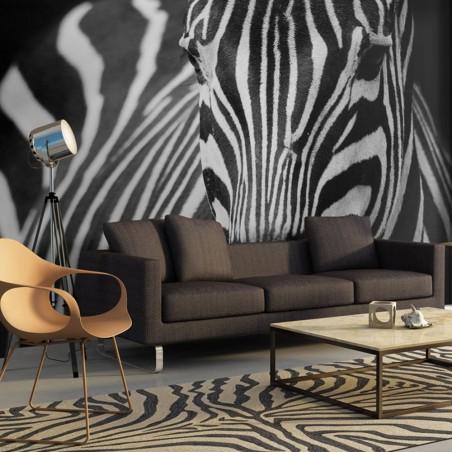 Fotomurale - Bianca con strisce nere - Quadri e decorazioni