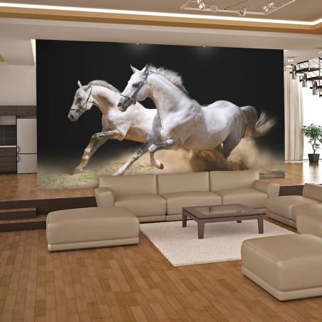 Fotomurale - Cavalli al galoppo sulla sabbia - Quadri e decorazioni