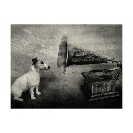 Fotomurale - Dog's melodies - Quadri e decorazioni