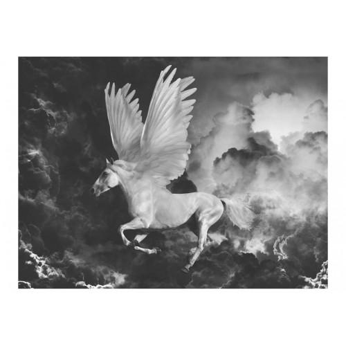 Fotomurale - Pegasus sulla strada per l'Olimpo - Quadri e decorazioni