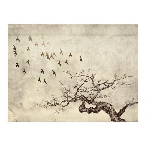 Fotomurale - Flock of birds - Quadri e decorazioni