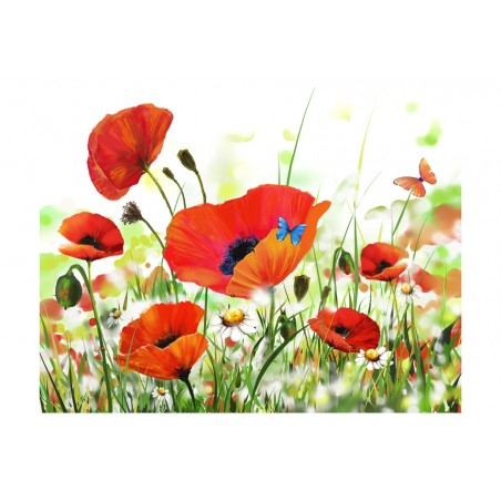 Fotomurale - Country poppies - Quadri e decorazioni