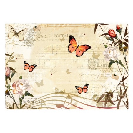 Fotomurale - Melodie di farfalle - Quadri e decorazioni