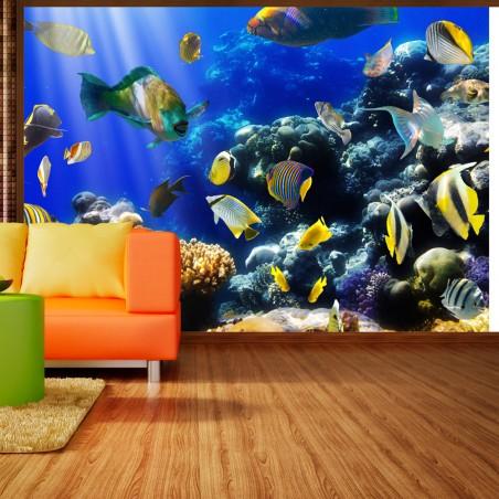 Fotomurale - Avventura sott'acqua - Quadri e decorazioni
