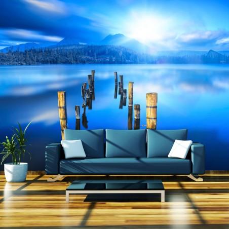 Fotomurale - Il momento di solitudine - Quadri e decorazioni