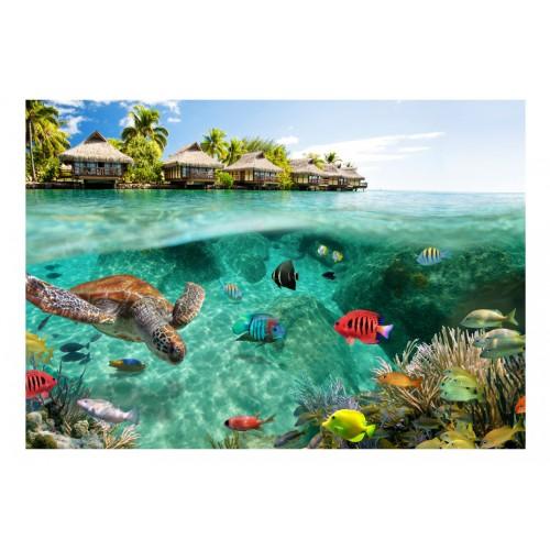 Fotomurale - Sotto la superficie dell'acqua - Quadri e decorazioni