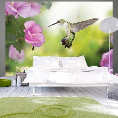 Fotomurale - Humming-bird - Quadri e decorazioni