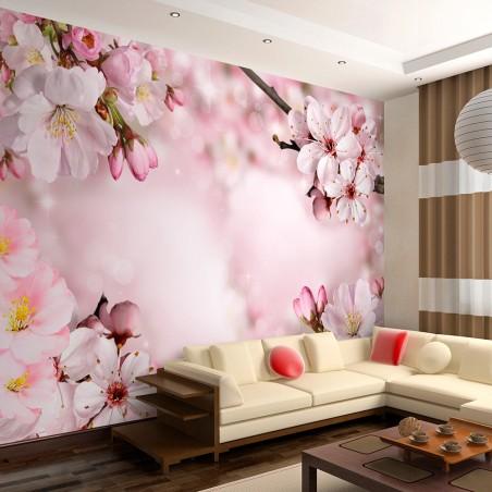 Fotomurale - Spring Cherry Blossom - Quadri e decorazioni