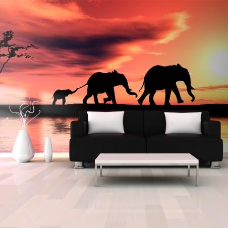 Fotomurale XXL - elefanti: famiglia - Quadri e decorazioni