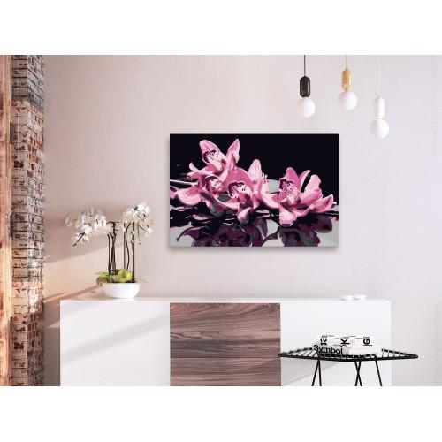 Quadro fai da te - Orchidea Rosa (sfondo nero) - Quadri e decorazioni
