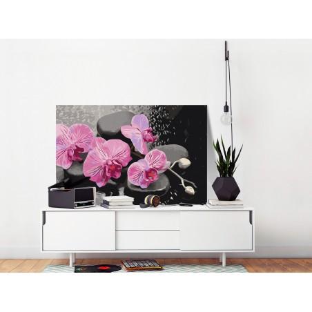 Quadro fai da te - Orchidea e sassi zen (sfondo nero) - Quadri e decorazioni