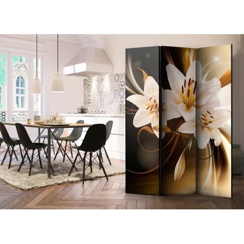 Paravento - Circle of Light [Room Dividers] - Quadri e decorazioni