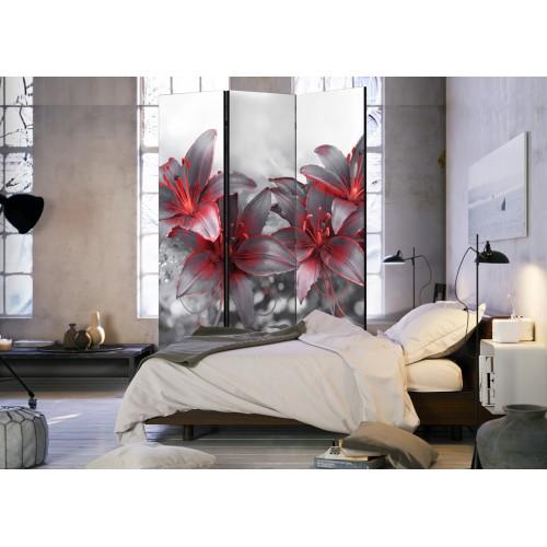 Paravento - Shadow of Passion [Room Dividers] - Quadri e decorazioni