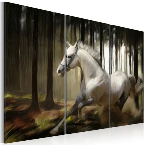 Quadro - Cavallo bianco tra gli alberi - Quadri e decorazioni