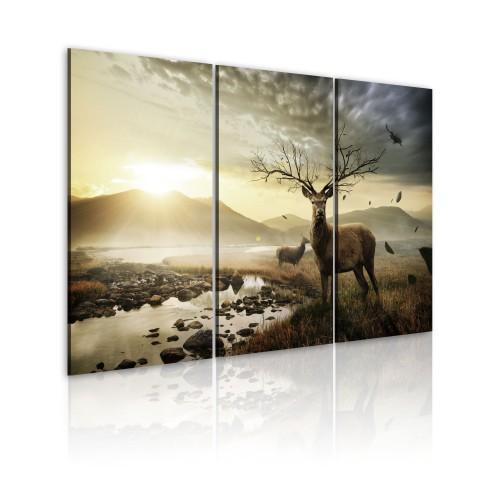 Quadro - Cervo con corna d'albero - Quadri e decorazioni
