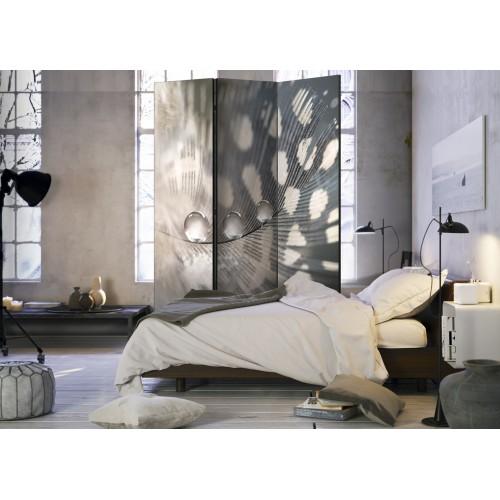 Paravento - Elegant Feather [Room Dividers] - Quadri e decorazioni