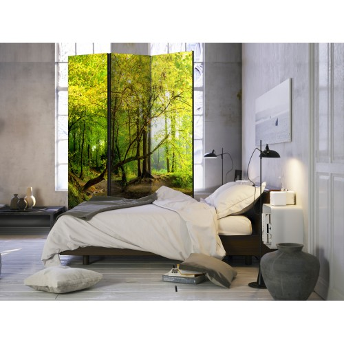 Paravento - Forest Clearing [Room Dividers] - Quadri e decorazioni