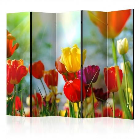 Paravento - Spring Tulips II [Room Dividers] - Quadri e decorazioni