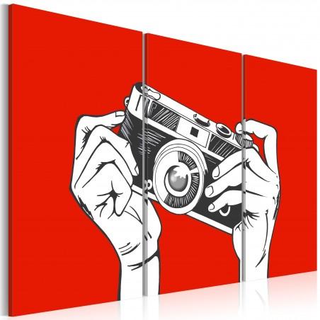 Quadro - A photographer - Quadri e decorazioni