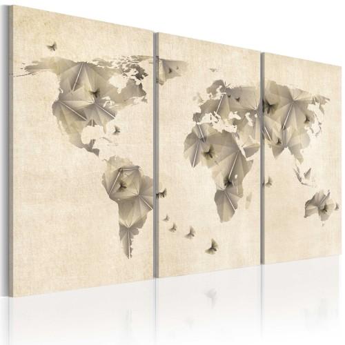 Quadro - Atlante delle farfalle: trittico - Quadri e decorazioni