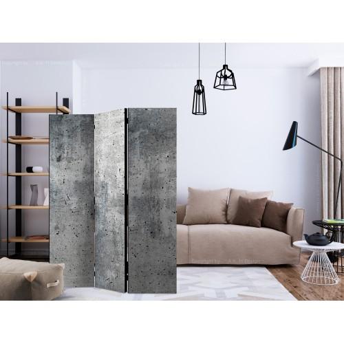 Paravento - Fresh Concrete [Room Dividers] - Quadri e decorazioni