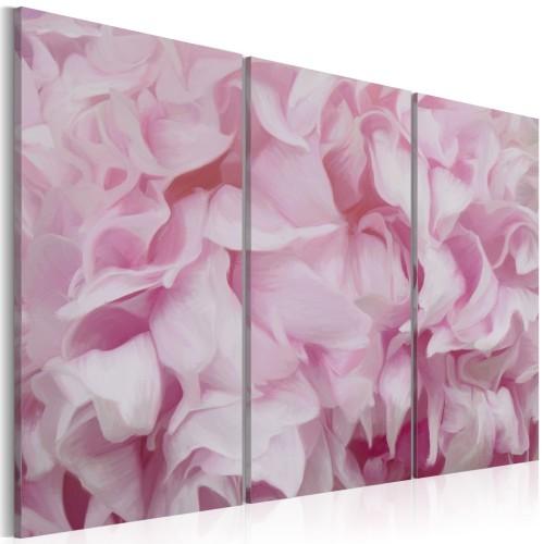 Quadro - Azalea di tonalità rosa - Quadri e decorazioni
