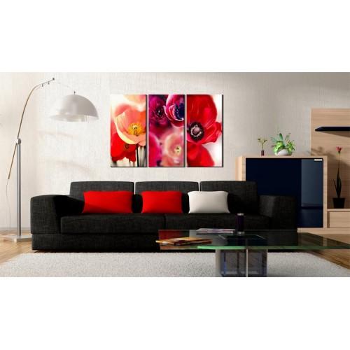Quadro - Papaveri - tre prospettive - Quadri e decorazioni