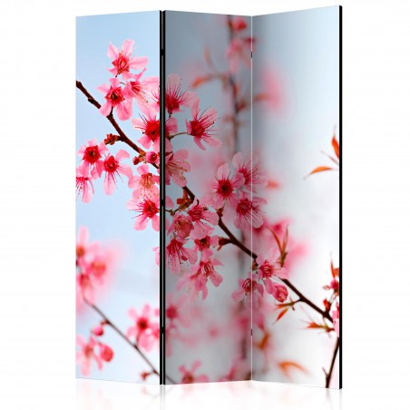 Paravento - Symbol of Japan - sakura flowers [Room Dividers] - Quadri e decorazioni
