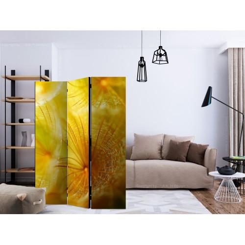 Paravento - Soft dandelion flower [Room Dividers] - Quadri e decorazioni